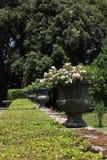 Vases antiques à urne dans un jardin Photo stock