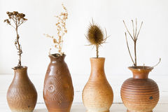 Vases with dried flowers stock photos