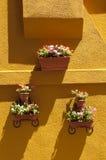 Vases Stock Photos