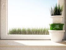 Vases with the grass on the windowsill Stock Photos