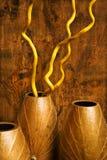 Vases intérieurs. Images stock