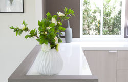 Vases and plant on countertop Royalty Free Stock Image