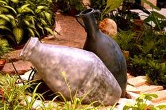 Vases sur le jardin Photographie stock libre de droits
