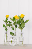 Vases with yellow roses Stock Photography