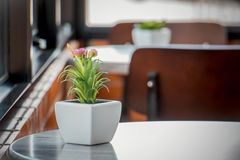 Vasi bianchi ceramici decorativi sulla tavola di legno, tono d'annata Fotografia Stock Libera da Diritti