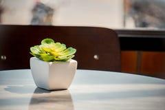 Vasi bianchi ceramici decorativi sulla tavola di legno, tono d'annata Immagine Stock