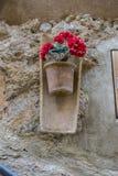 Vasi che appendono sulla parete con i fiori nella città di Valldemosa Fotografia Stock Libera da Diritti