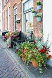 Vasi con le angiosperme in una via olandese Fotografia Stock Libera da Diritti