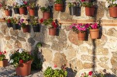 Parete con i vasi da fiori immagini stock immagine 34563434 for Vasi appesi