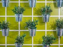 Vasi da fiori colourful artificiali che appendono su una parete fotografia stock libera da diritti