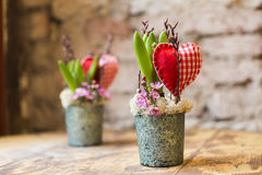 Vasi da fiori con cuore Fotografia Stock