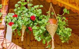 Vasi da fiori con i gerani che appendono balcone di legno decorativo fotografie stock libere da diritti