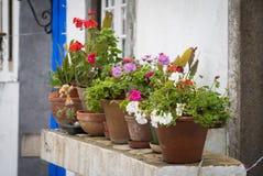 Vasi da fiori davanti alla vecchia casa Immagine Stock