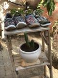 Vasi da fiori della scarpa Immagini Stock Libere da Diritti