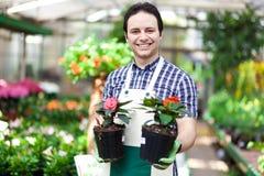 Vasi da fiori della tenuta del lavoratore della serra Fotografie Stock