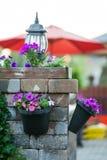 Vasi da fiori innaffiati che pendono dalla colonna di pietra Fotografia Stock