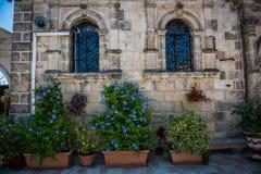 Vasi da fiori nel cortile fotografie stock libere da diritti