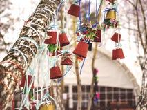 Vasi da fiori su un albero Fotografie Stock Libere da Diritti