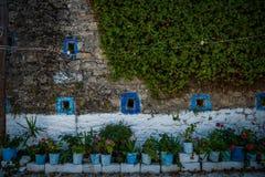 Vasi da fiori su Zacinto, Grecia Fotografie Stock