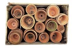 Vasi da fiori in una cassa Fotografia Stock Libera da Diritti