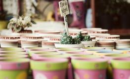 Vasi del giardino Fotografia Stock