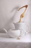 Vasi della porcellana Fotografie Stock Libere da Diritti