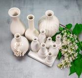 Vasi della porcellana con un ramo del lillà Fotografie Stock Libere da Diritti
