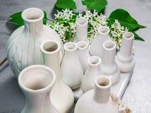 Vasi della porcellana con un ramo del lillà Immagine Stock
