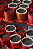 Vasi di giardinaggio vuoti Fotografie Stock Libere da Diritti