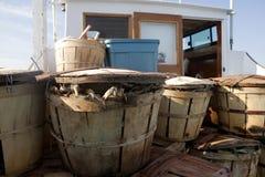Vasi di granchio in pieno dei granchi fotografia stock libera da diritti