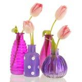 Vasi moderni con i tulipani Fotografia Stock