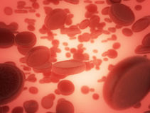 Vasi sanguigni umani Fotografia Stock Libera da Diritti