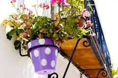 Vasi tipici della piantatrice della parete in villaggio andaluso Immagini Stock