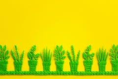 Vasi verdi con le piante Fotografia Stock