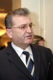 Vasile Puscas Lizenzfreies Stockfoto