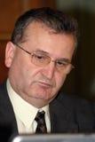 Vasile Puscas Immagini Stock