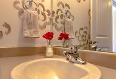 Vask av det lyxiga badrummet med den röda blomman fotografering för bildbyråer