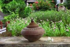 Vaso bevente da terraglie Fotografia Stock