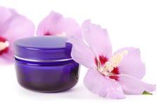 Vaso blu del fronte crema con i fiori fragili Fotografia Stock Libera da Diritti