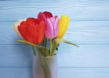 Vaso bonito das tulipas, em um fundo de madeira azul Fotos de Stock