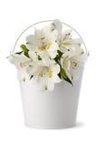 Vaso com as flores no fundo branco Fotografia de Stock