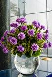 Vaso com flores cor-de-rosa imagem de stock