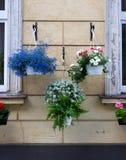 Vaso com flores da mola Foto de Stock Royalty Free
