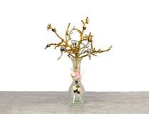 Vaso com um ramo decorativo Fotos de Stock Royalty Free