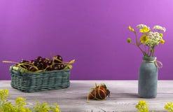 Vaso con i wildflowers Un canestro delle ciliege Una fragola è sulla tavola Giovani adulti immagini stock