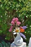 Vaso con il tagete, Valeriano, lavanda, Coneflower bianco fotografia stock libera da diritti