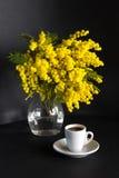 Vaso con la mimosa e la tazza di caffè su un fondo nero Fotografia Stock