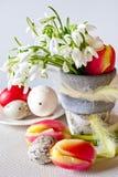 Vaso da fiori con i bucaneve ed i fiori bianchi dei tulipani e le uova perforate bianche decorate Fotografia Stock Libera da Diritti