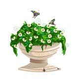 Vaso da fiori con i fiori Royalty Illustrazione gratis