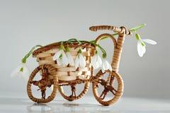 Vaso da fiori della bicicletta con i fiori della molla Immagine Stock Libera da Diritti
